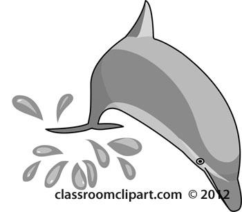 dolphin-gray-12212_05B.jpg