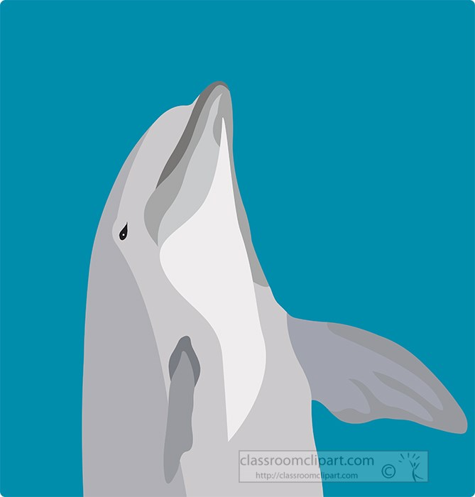 dolphins jumping on blue background.jpg