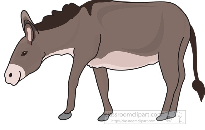 brown-donkey.jpg