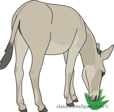 donkey_eating_412_01A.jpg