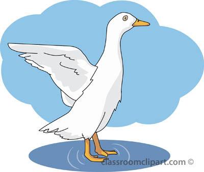 ducks_01_flapping_wings.jpg