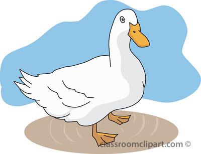 ducks_02_standing.jpg