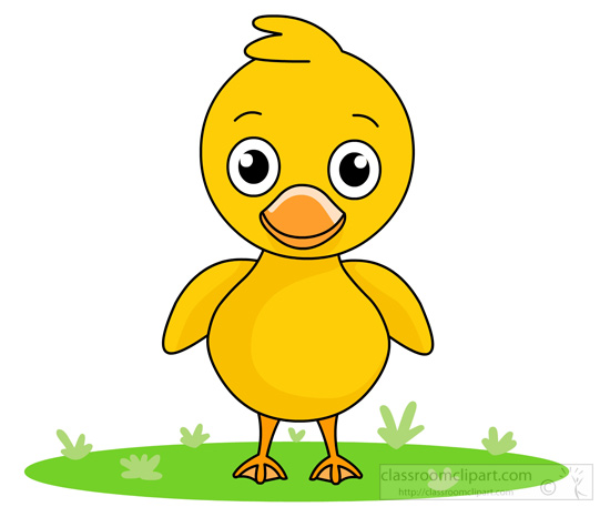 little-cute-yellow-duck-standing-1115.jpg