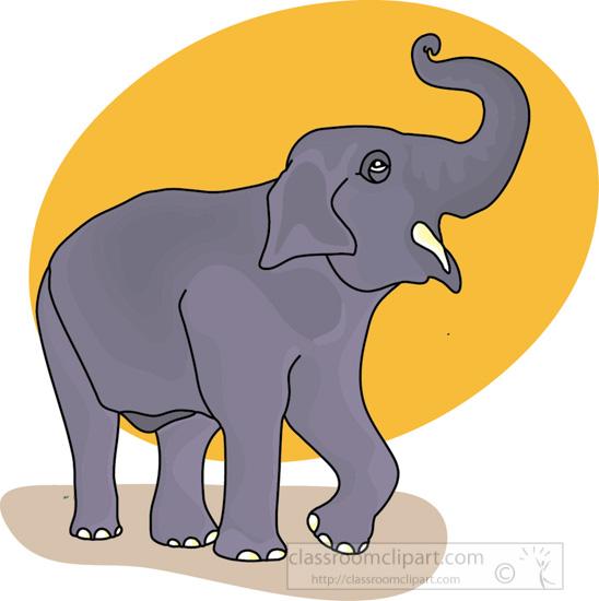 elephant_sun_background.jpg
