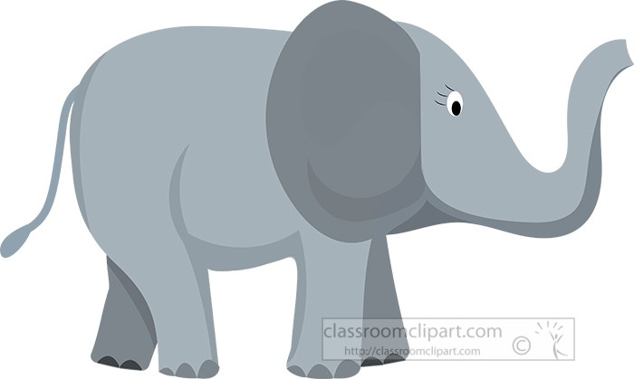 gray-baby-elephant.jpg