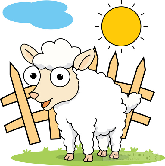 big-eyed-white-sheep-near-fence.jpg