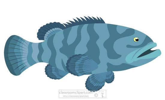grouper-marine-life-clipart-718.jpg