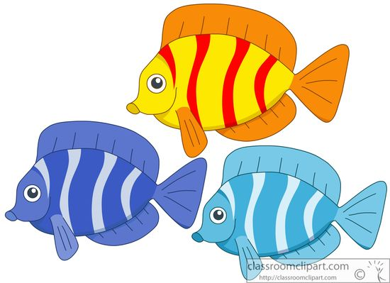 three-colorful-fish-914.jpg