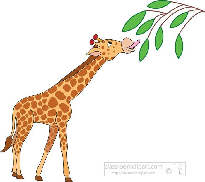african-giraffe-standing-eating-leaves-from-tree-vector-clipart.jpg