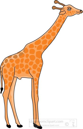 eating-giraffe-3.jpg