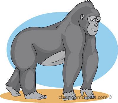 Gorilla Clipart : Gorilla_01A_4112 : Classroom Clipart