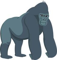 free gorilla clipart clip art pictures graphics illustrations rh classroomclipart com gorilla clip art black and white gorilla clipart easy