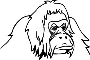gorilla_05.jpg