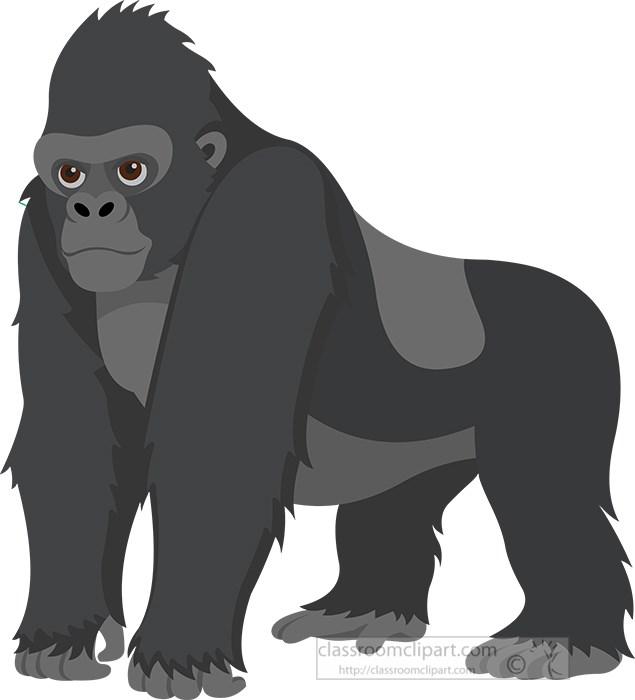 large-gorilla-stadning-on-all-four-legs-clipart.jpg