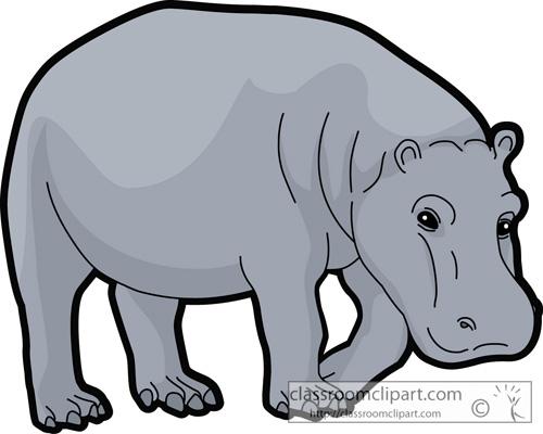 hippopotami_72013.jpg