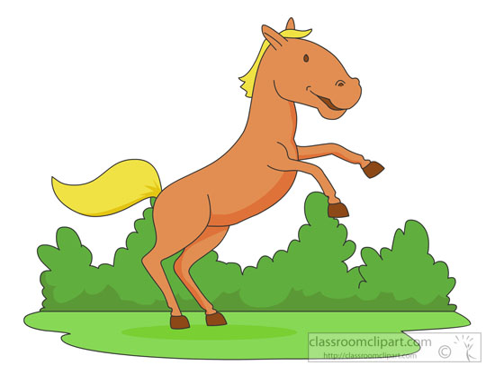 horse-standing-on-hind-legs.jpg