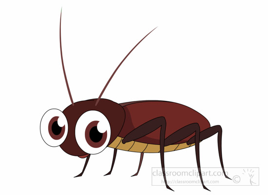 Cockroach-Insect-Clipart.jpg