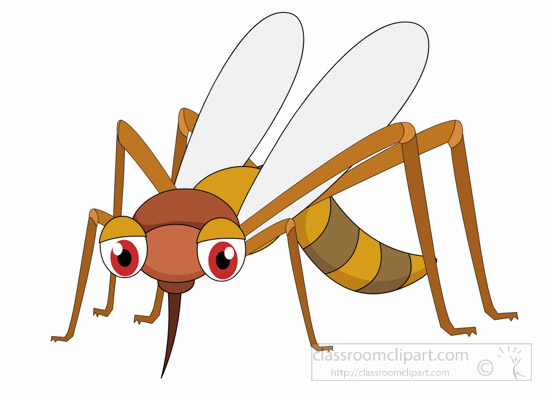Mosquito-Insect-Clipart.jpg