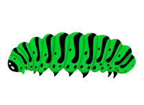 Search Results - Search Results for caterpillar Pictures ...