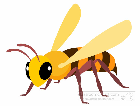 bee-insect-clipart-illustration-6818.jpg