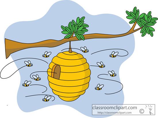 beehive_on_tree_branch.jpg