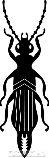 beetle-insect-silhouette-clipart-11.jpg