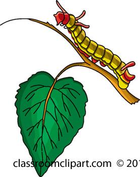 caterpillar_711_19A.jpg