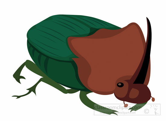 dung-beetle-insect-clipart-1695.jpg