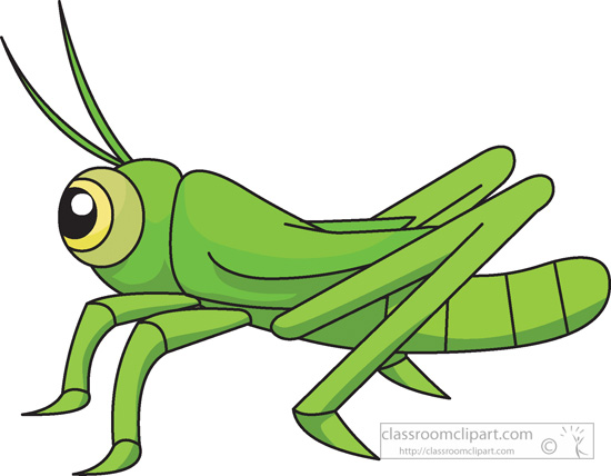 Insect Clipart Clipart- grasshopper-insects-978 ...