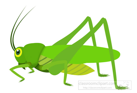 Insect Clipart : green-grasshopper-insect-clipart-725 ...