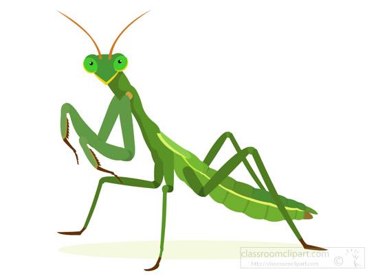 green-praying-mantis-clipart-image.jpg