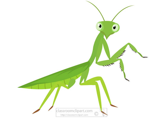 green-praying-mantis-insect-clipart-718.jpg