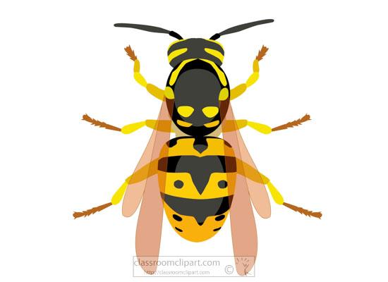 hornet-insect-clipart-718.jpg