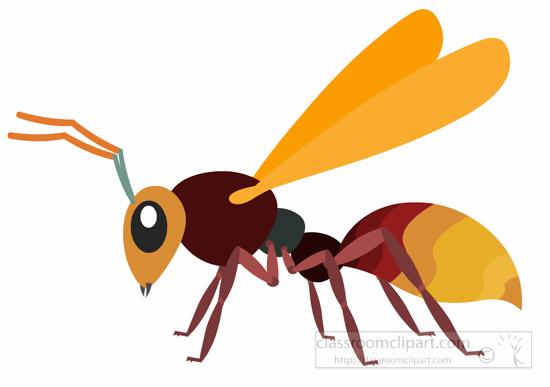 hornet-insect-clipart-illustration-6818.jpg