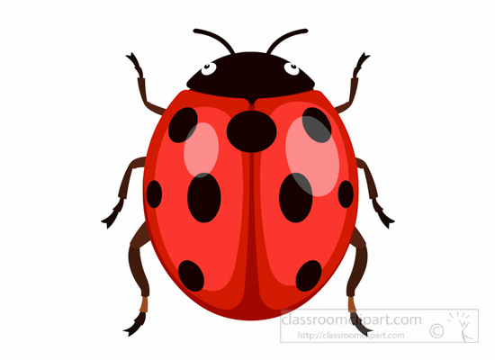 Insect Clipart Clipart - Ladybug-Ladybird-Insect-Clipart -4426