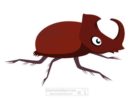 large-horned-rhinoceros-beetle-clipart-718.jpg