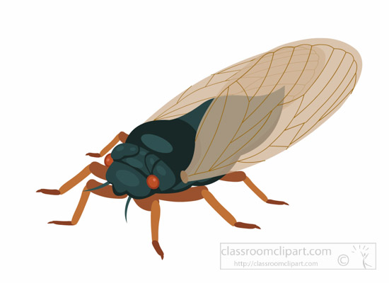 periodical-cicada-insect-clipart-1695.jpg