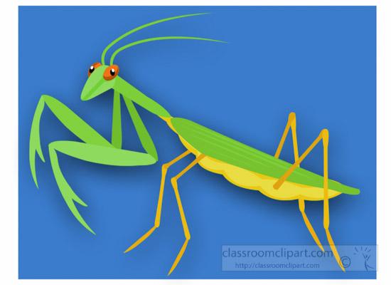 praying-mantis-insect-clipart.jpg