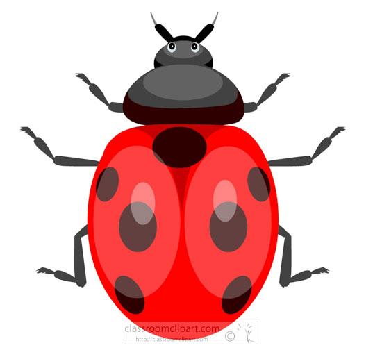 red-black-ladybug-clipart-718.jpg