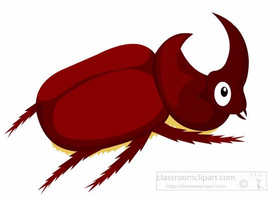 rhinoceros-beetle-insect-clipart.jpg