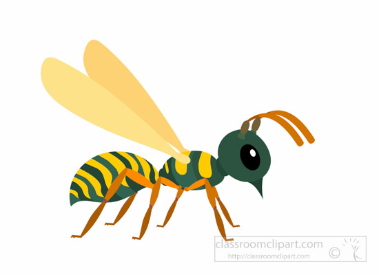 wasp-insect-clipart-illustration-6818.jpg