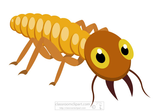wood-eating-termite-insect-clipart-718.jpg
