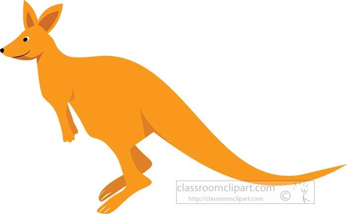 kangaroo-on-hind-legs-marsupial-animal.jpg