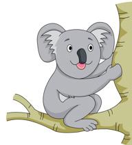 free koala clipart clip art pictures graphics illustrations rh classroomclipart com koala clipart black and white koala clipart cute