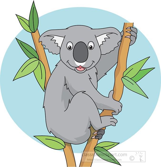austrialian-koala-sitting-in-tree-holding-branch.jpg
