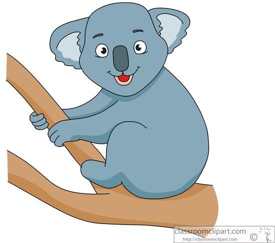 cute-koala-914.jpg