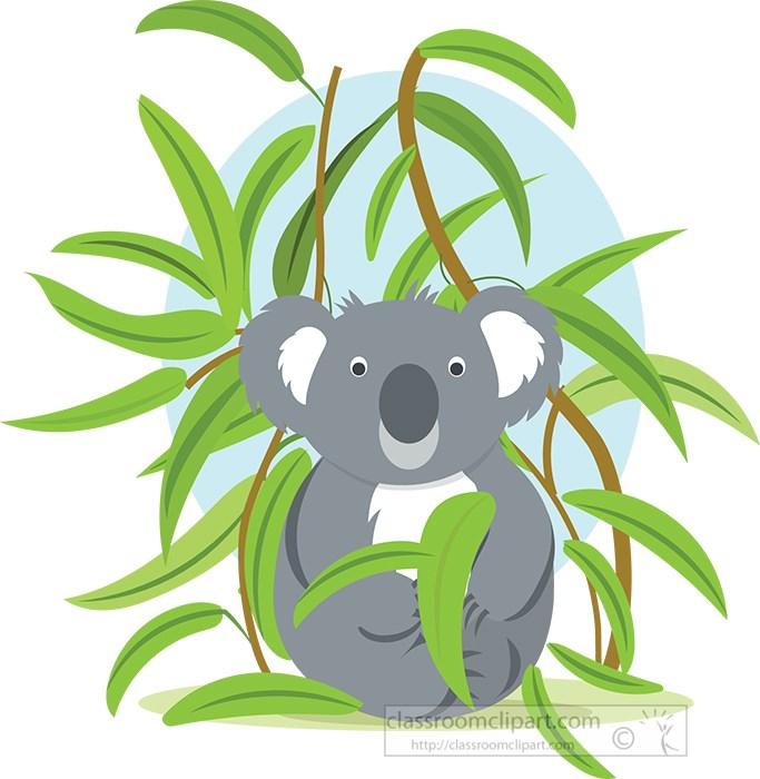 cute-koala-sitting-euca;yptus-branches.jpg
