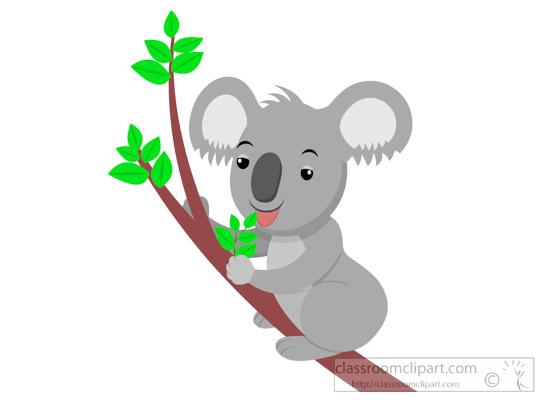 koala-clipart-617.jpg