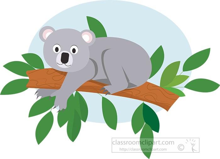 koala-resting-on-a-tree-branch-vector-clipart.jpg