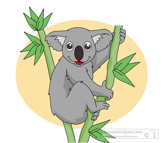 koala-sitting-in-tree-holding-branch.jpg